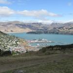 Dunedin bay