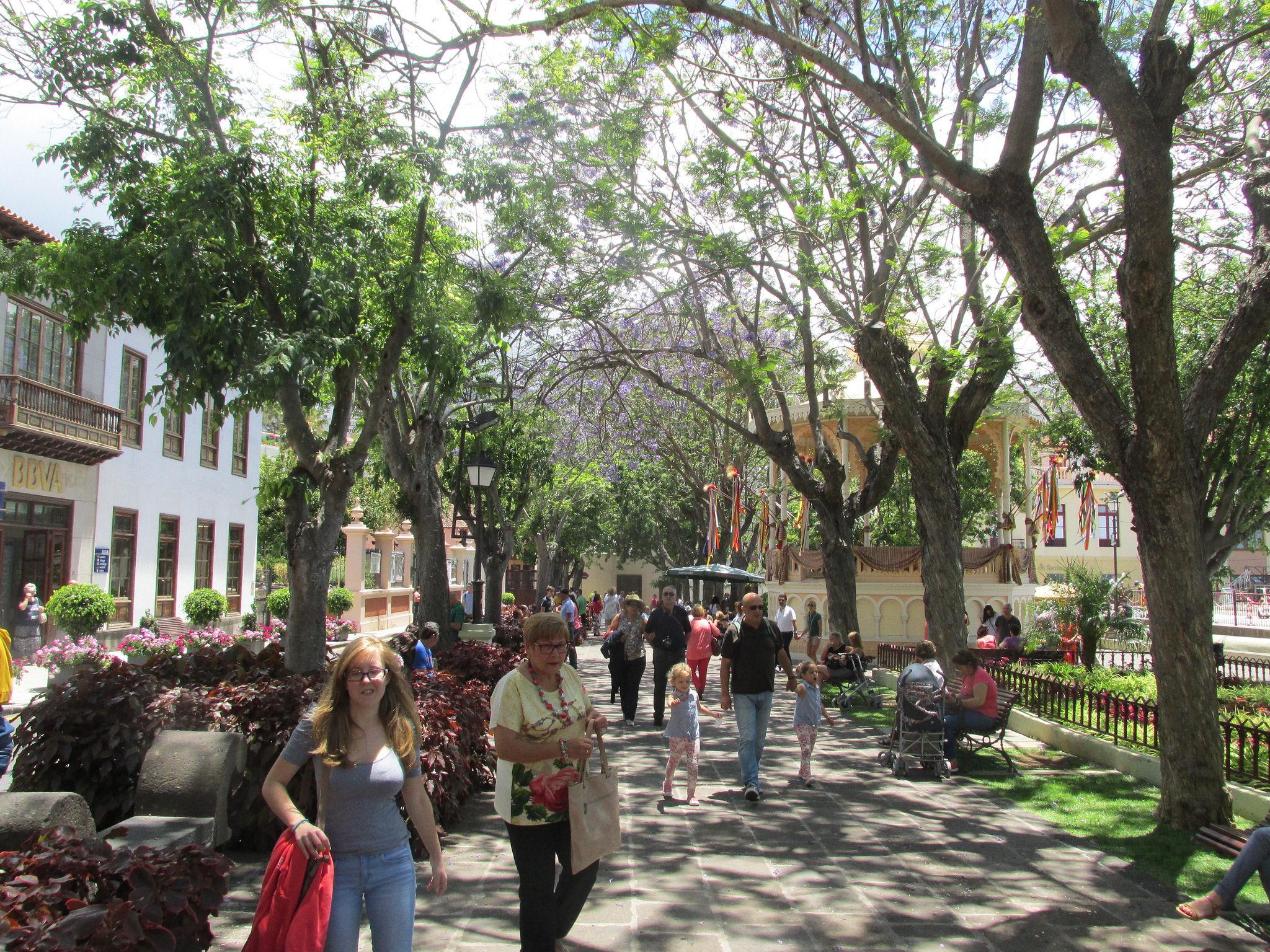 Passeggiando in La Orotava