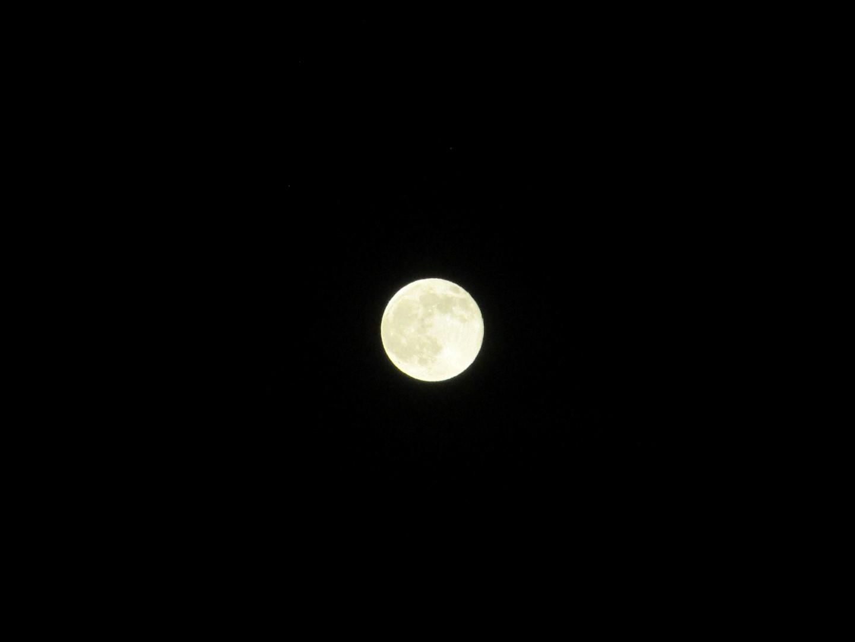 luna blu?