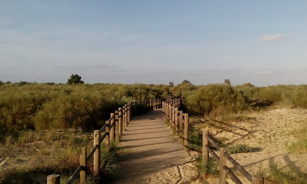 praia vila real de santo antonio (Copia)