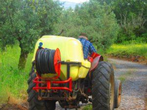 Il vecchio sul trattore
