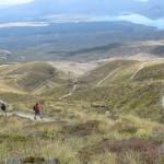 Tongariro descending