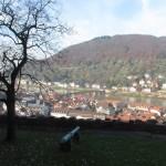 Heidelberg vista